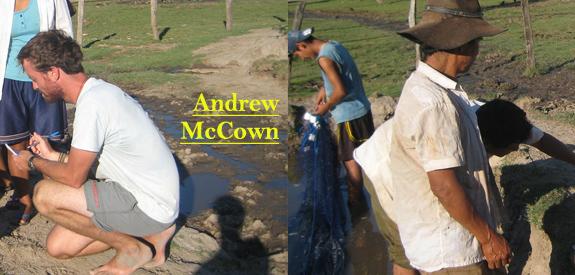 Andrew McCown